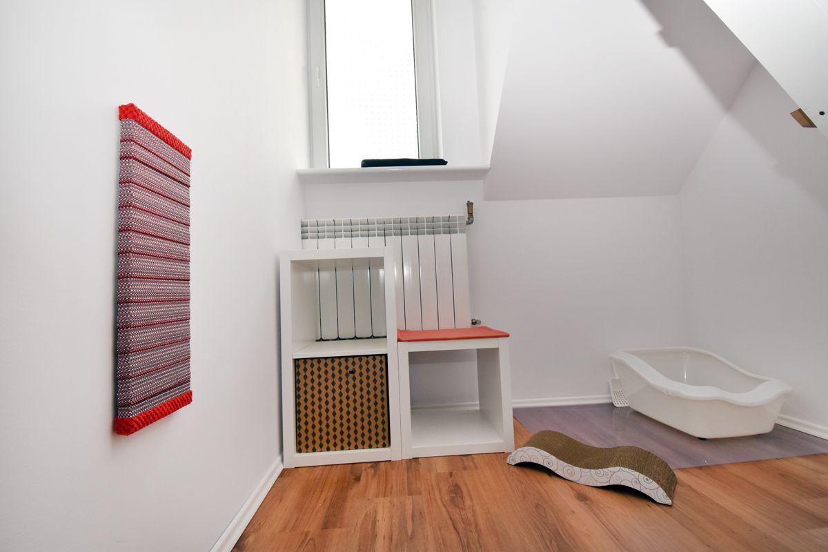 Pokój dla kota z oknem grzejnikiem i czerwonymi akcesoriami
