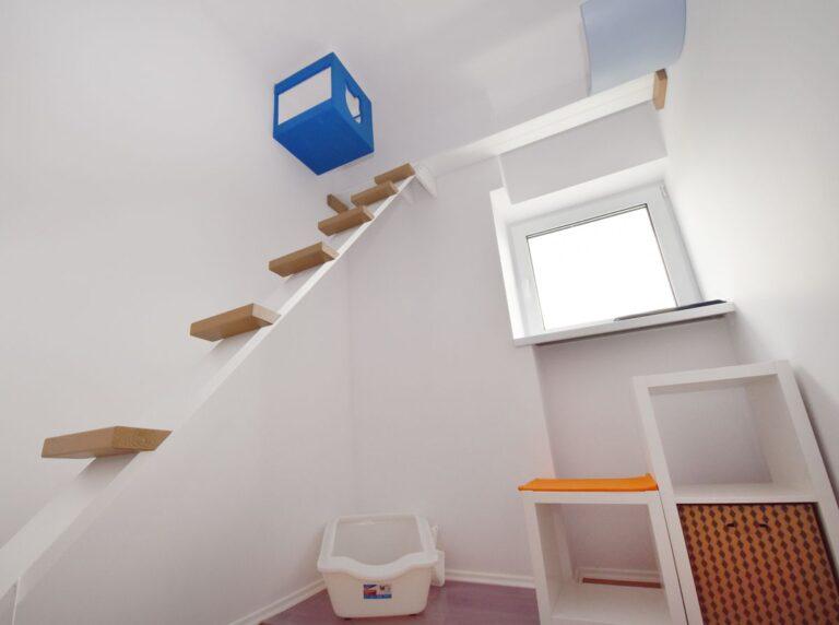 Pokój dla kota z drabinką i niebieską wiszącą półką