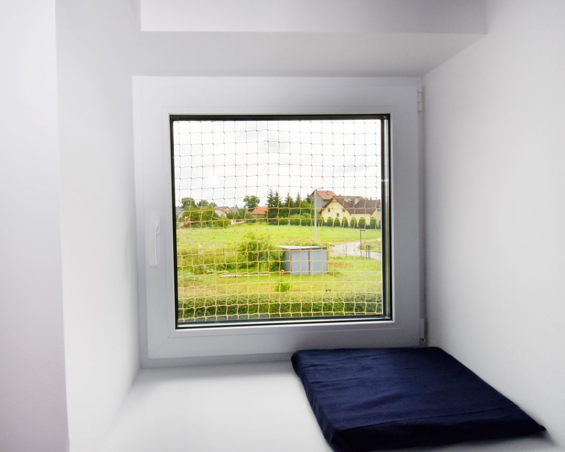 Zabezpieczone okno z legowiskiem dla kota na parapecie