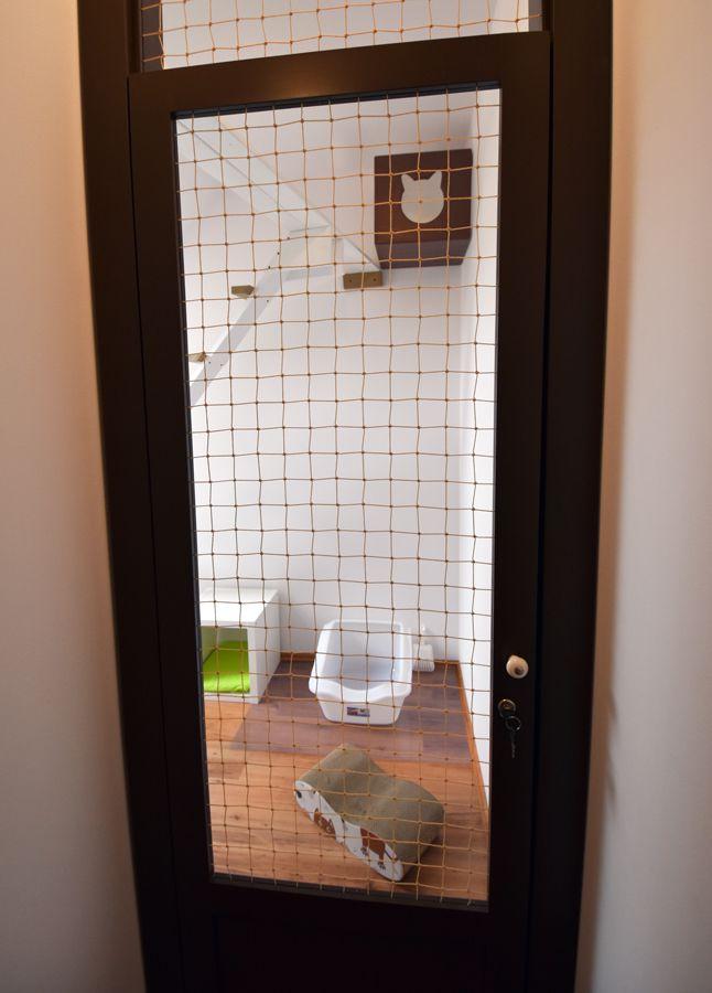 Pokójdla kota za drzwiami zabezpieczonymi siatką