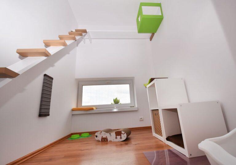 Pokój dla kota z drapakami, budkami, pomostem, oknem i grzejnikiem