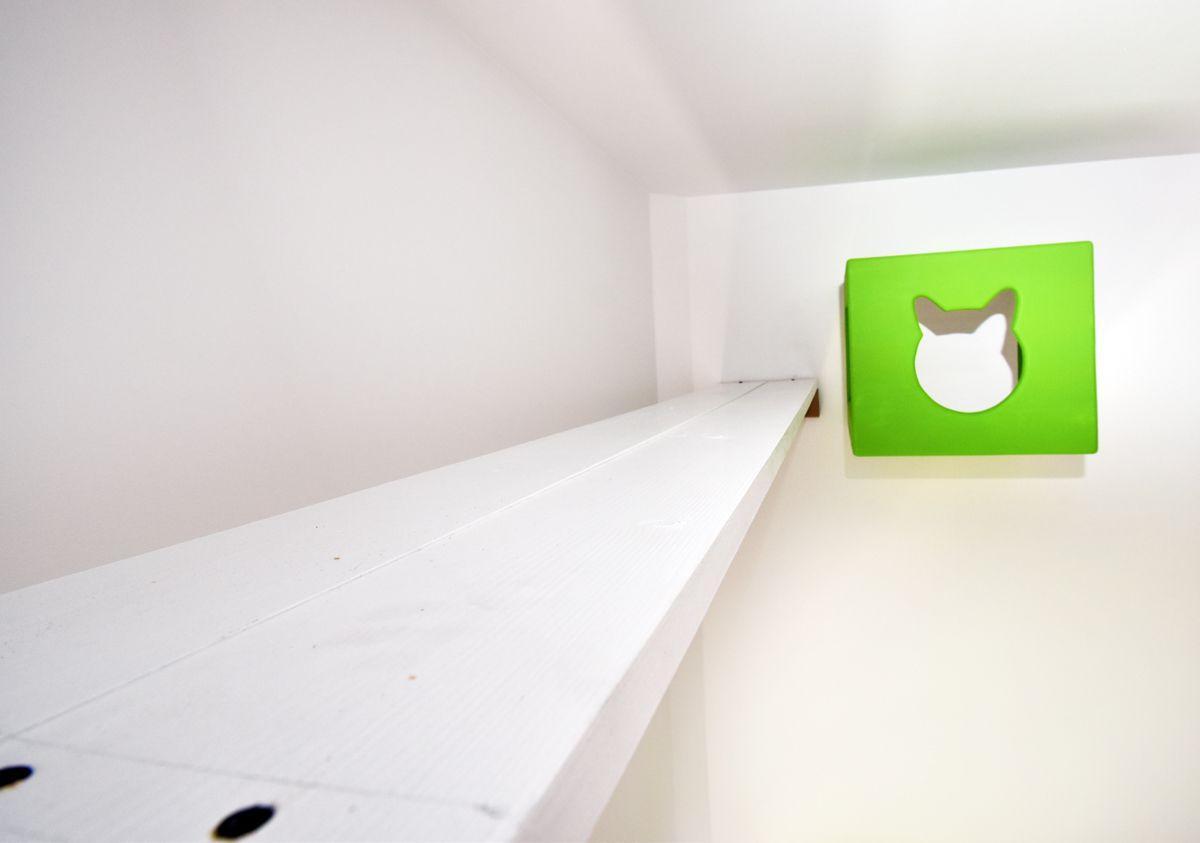 Pomost i budka dla kota zielona
